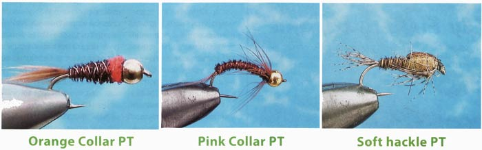 Sawyer 's Pheasant Tail
